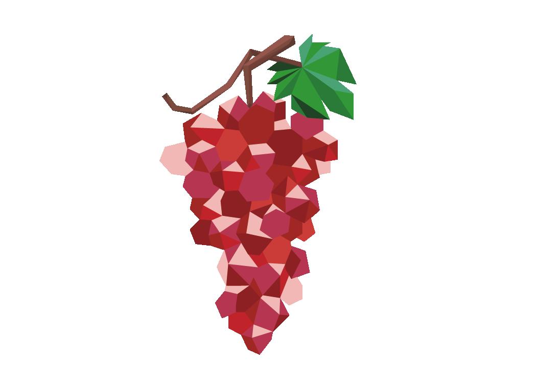 frutas ilustraciones-05